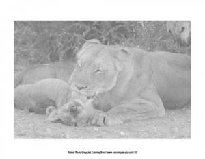 Animal Moms Grayscale Coloring Book Pic 03