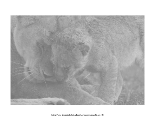 Animal Moms Grayscale Coloring Book Pic 05