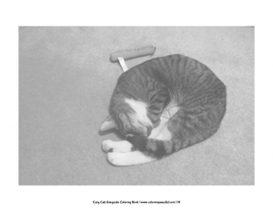 Cozy Cats Grayscale Coloring Book Pic 02