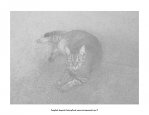 Cozy Cats Grayscale Coloring Book Pic 03