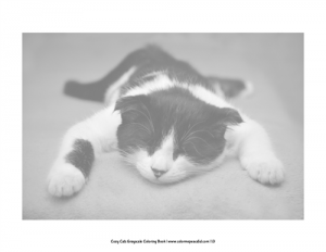 Cozy Cats Grayscale Coloring Book Pic 06