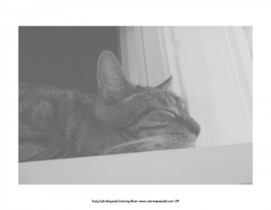 Cozy Cats Grayscale Coloring Book Pic 07