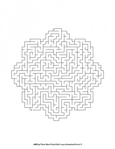 aMAZing Flower Mazes Puzzle Book Volume 1 Pic 02