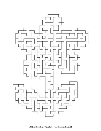 aMAZing Flower Mazes Puzzle Book Volume 1 Pic 03