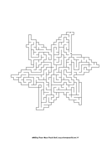 aMAZing Flower Mazes Puzzle Book Volume 1 Pic 04